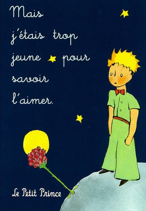15 Quotes From The Little Prince That Will Make Your: Umijeće Malih Koraka